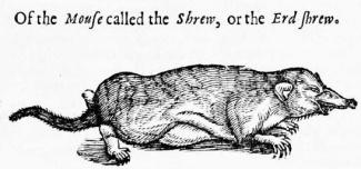 topsells-shrew-woodcut-1658 adj
